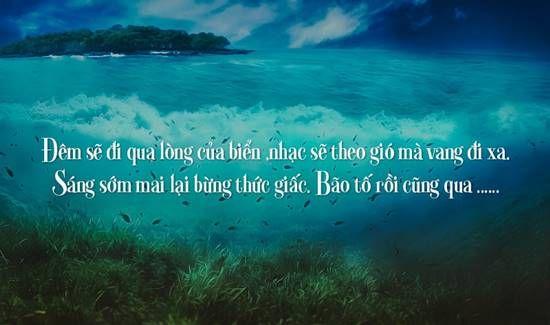 Tuyển tập các câu thơ ngắn về biển hay nhất