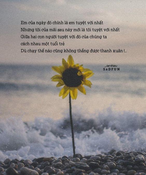 Tuyển tập những câu nói hay về biển và tình yêu ấm áp